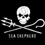 Pay It Forward Friday: Sea Shepherd