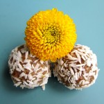 Sprouted Sunflower Seed Truffles