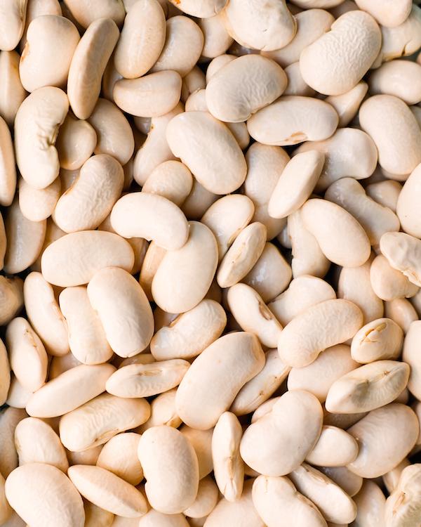 Corona beans close up