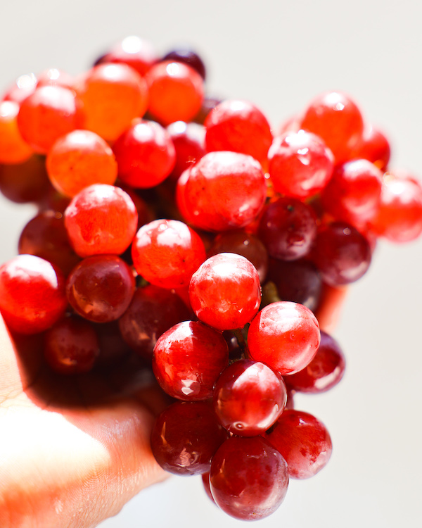 Red grapes wet in hand
